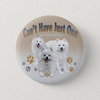 American Eskimo Can't Have Just One Button