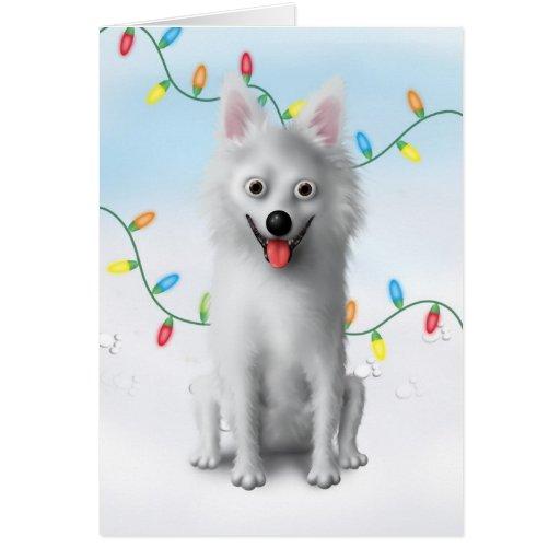 American Eskimo Christmas Greeting Cards