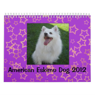 American Eskimo Dog 2012 Calendar