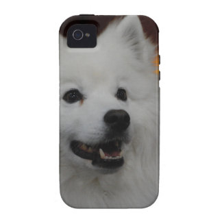 american-eskimo-dog-2.jpg Case-Mate iPhone 4 carcasa