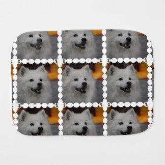 american-eskimo-dog-2.jpg paños de bebé