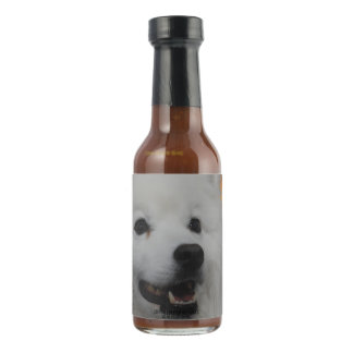 american-eskimo-dog-2.jpg salsa picante
