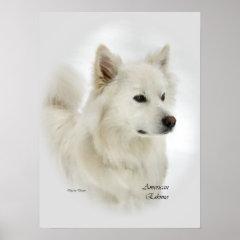 American Eskimo Dog Art Gifts print