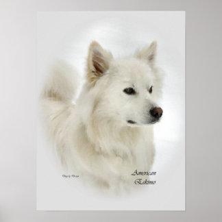 American Eskimo Dog Art Gifts Poster
