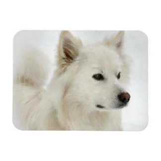 American Eskimo Dog Art Magnet