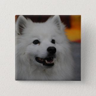 American Eskimo Dog Button