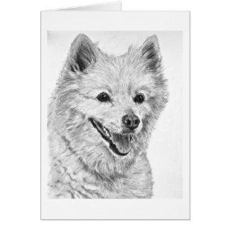 American Eskimo Dog Greeting Cards