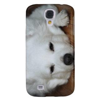 American Eskimo Dog Face Samsung S4 Case