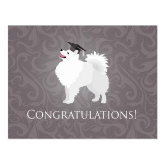 American Eskimo Dog Graduation Design Postcard