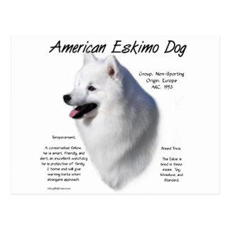 American Eskimo Dog History Design Post Card