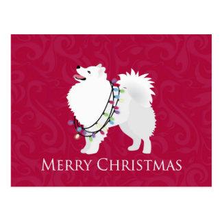American Eskimo Dog Merry Christmas Design Postcard