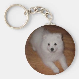 American_Eskimo_Dog_puppy Llavero Redondo Tipo Pin