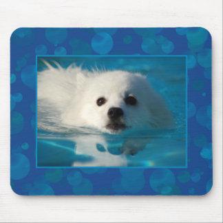 American Eskimo Dog Swimming Mouse Pad