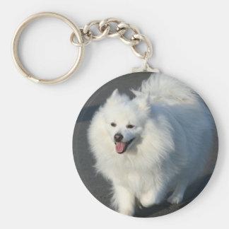American Eskimo keychain