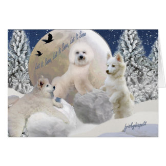 American Eskimo Let It Snow Cards