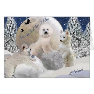 American Eskimo Let It Snow Cards