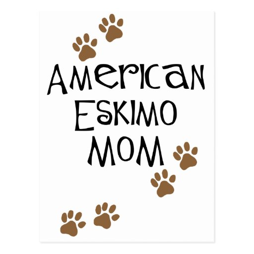 American Eskimo Mom Post Cards