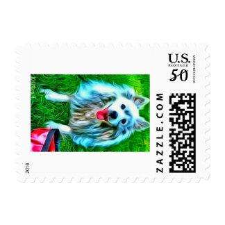 American Eskimo Postage