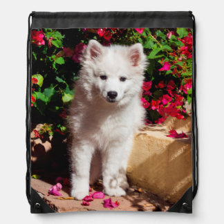 American Eskimo puppy sitting on garden stairs Drawstring Backpack