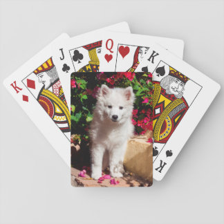 American Eskimo puppy sitting on garden stairs Playing Cards