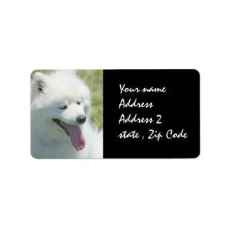 American Eskimo shipping label
