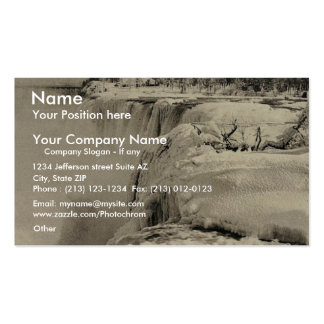 American Fall in winter, Niagara rare Photochrom Business Card