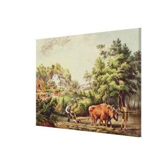 American Farm Scenes Canvas Print