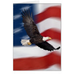 American flag and eagle cards
