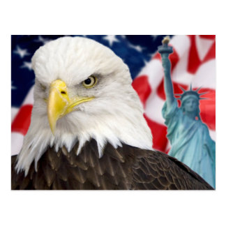 American flag and eagle statue of liberty postcard
