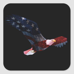 American Flag Bald Eagle Sticker