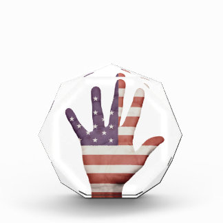 American Flag Hand Acrylic Award