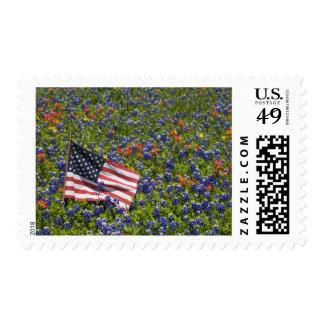 American Flag in field of Blue Bonnets, 2 Postage