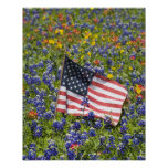 American Flag in field of Blue Bonnets, Posters