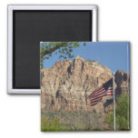 American Flag in Zion National Park I 2 Inch Square Magnet