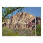 American Flag in Zion National Park I Photo Print