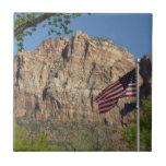 American Flag in Zion National Park I Tile