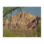 American Flag in Zion National Park I Wood Wall Art