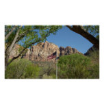 American Flag in Zion National Park II Poster