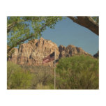 American Flag in Zion National Park II Wood Wall Art