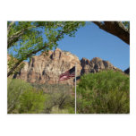 American Flag in Zion National Park Postcard