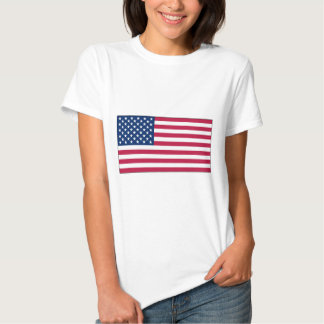 American Flag	Ladies Baby Doll t-shirt (Fitted)