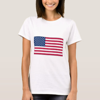 American FlagLadies Baby Doll t-shirt (Fitted)