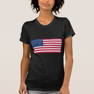 American FlagLadies Sheer V-Neck t-shirt (Fitted)