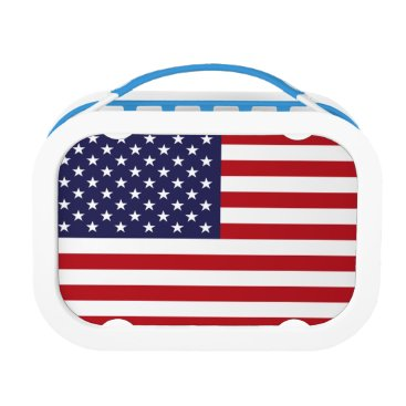USA Themed American Flag Lunch Box