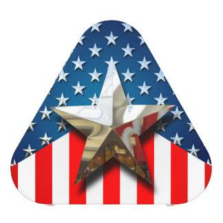 American Flag Speaker