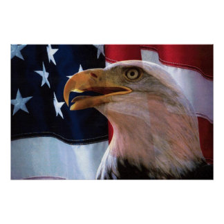 American flag with a Bald Eagle Poster