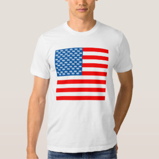 American flag with dollar signs. T-Shirt
