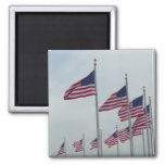 American Flags at the Washington Monument Magnet