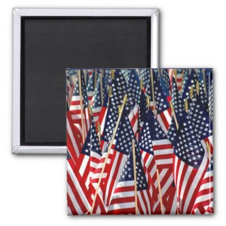 American Flags Magnet magnet