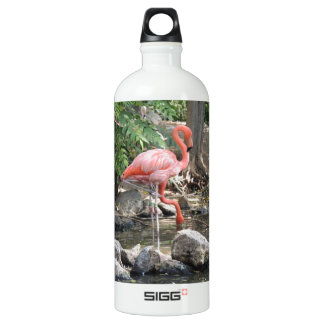 American Flamingo Aluminum Water Bottle
